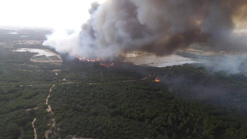 A forest fire blazes in the Moguer area in southern Spain, on Saturday June 24, 2017. Photo: INFOCA via AP