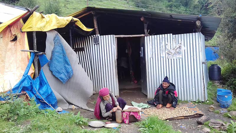FILE - Elderly couple resting in front of their temporary hut in Laprak of Dharche Rural Municipality, Gorkha, on Tuesday, July 11, 2017. Photo: THT