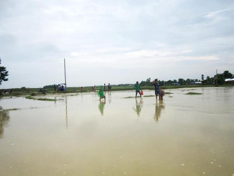 Flood victims heading to safe places after a swollen local river entered their settlement, in Tirhut Rural Municipality of Saptari District, on Wednesday, July 5, 2017. Photo: THT