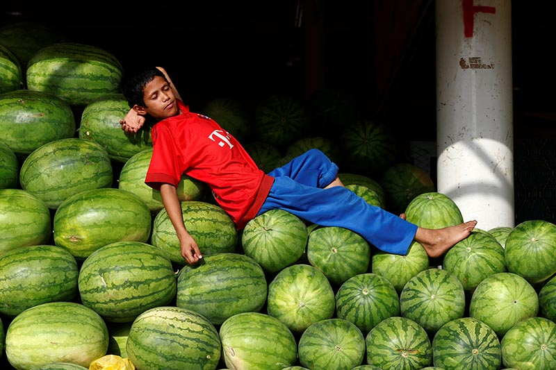 A Saudi boy rests on watermelons in a market in Riyadh, Saudi Arabia, on July 31, 2017. Photo: Reuters