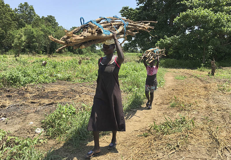 In this photo taken Friday, July 14, 2017, a woman and her daughter walk home with firewood in the small town of Rajaf, near Juba, in South Sudan. Photo: AP