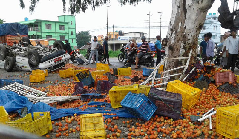 A magic van laden with tomatoes turns turtle due to speeding in the Birtamode road stretch, along the East-West Highway, on Saturday, July 29, 2017. Photo: RSS