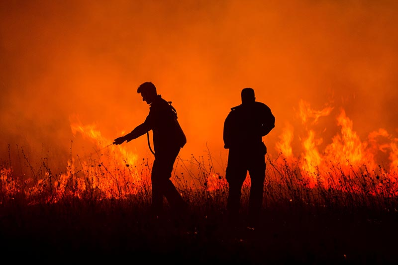 Firefighters work to put out a forest fire next to the village of Bribir, near the town of Skradin, Croatia, on August 22, 2017. Photo: Reuters