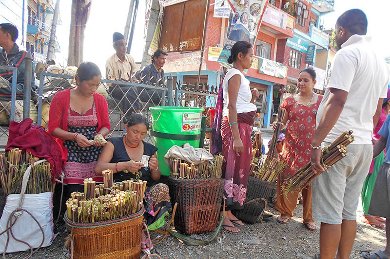 Vendors awaiting costumers to see their edible roots in Besishahar of Lamjung district, on Wednesday, August 30, 2017. Photo: RSS