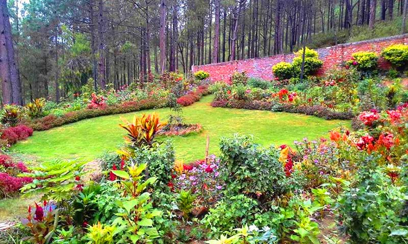 A view of the beautiful garden established over the garbage collection centre in Salleri forest area in Dhankuta Municipality, on Tuesday, August 22, 2017. Photo: THt