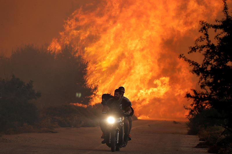 Two men and a dog on a motorbike flee a wildfire burning near the village of Varnavas, north of Athens, Greece, on August 14, 2017. Photo: Reuters