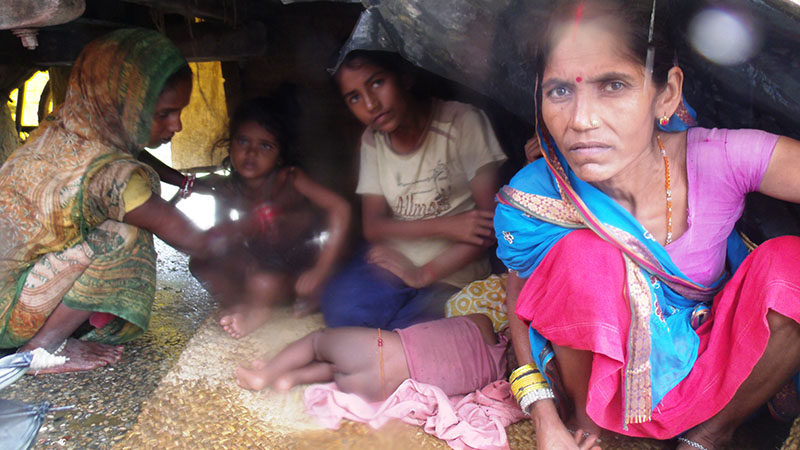 People displaced by flood take shelter in a makeshift hut in Rautahat district, on Monday, August 14, 2017. Photo: Prabhat Kumar Jha