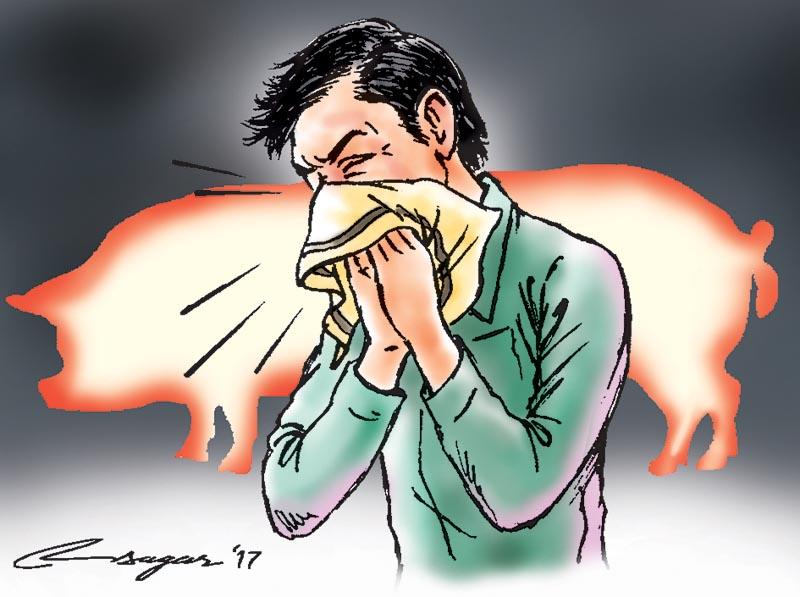 Swine flu. Illustration: Ratna Sagar Shrestha/THT
