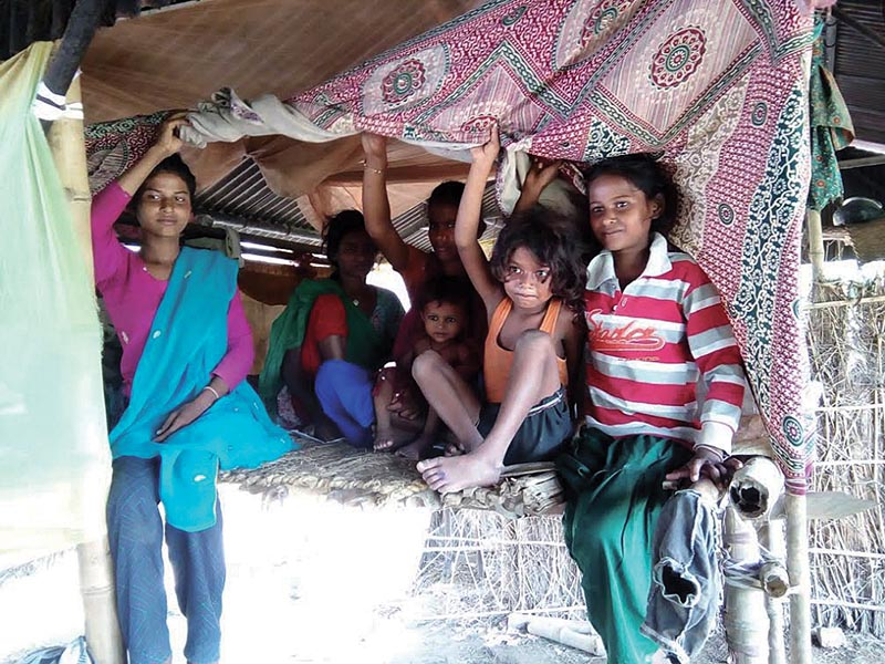 Flood-displaced people from the Dalit community taking shelter under a temporary hut in Dhankaul Rural Municipality, Sarlahi, on Saturday. Photo: THT