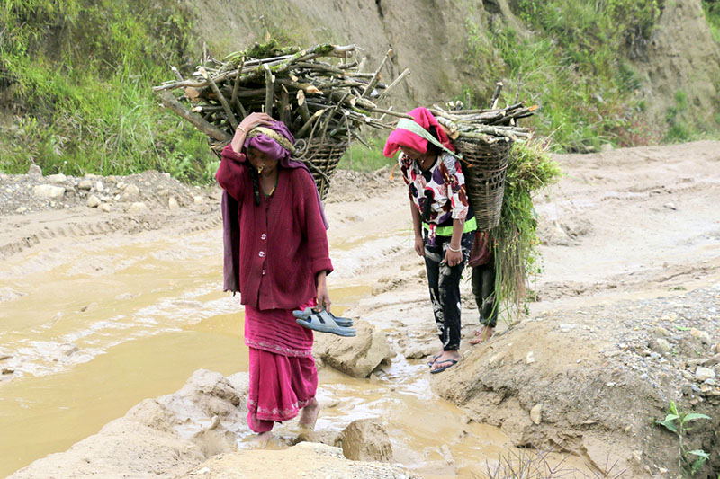 Villagers are seen carrying woods in wicker baskets on their back as they walk along muddy road at Yakcha chok in Sankhasubha district, on Saturday, September 16, 2017. Photo: RSS