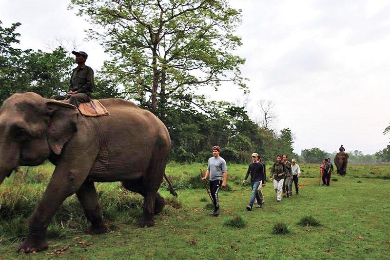 FILE PHOTO: Tourists on jungle safari, in Chitwan National Park, on Sunday, October 16, 2017. Photo: THT