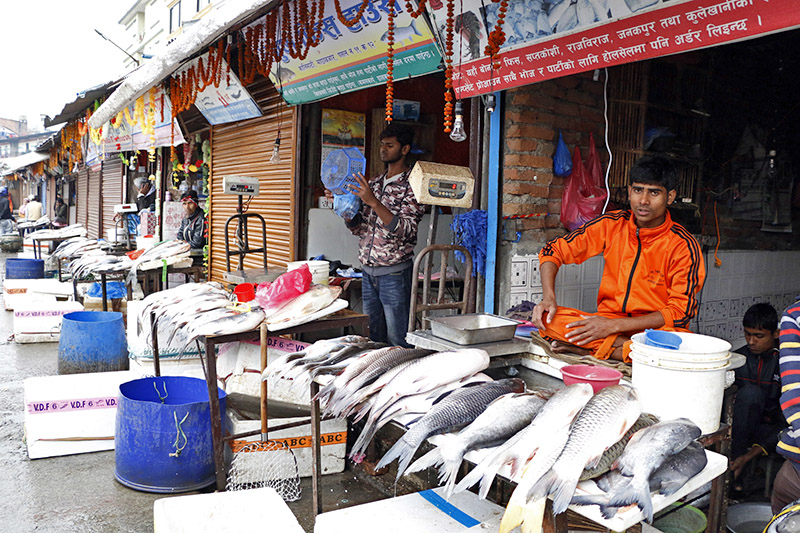 Fish vendors waiting customers at the Kalimati Fruits and Vegetables Market in Kathmandu, on Wednesday, November 01, 2017. Photo: RSS