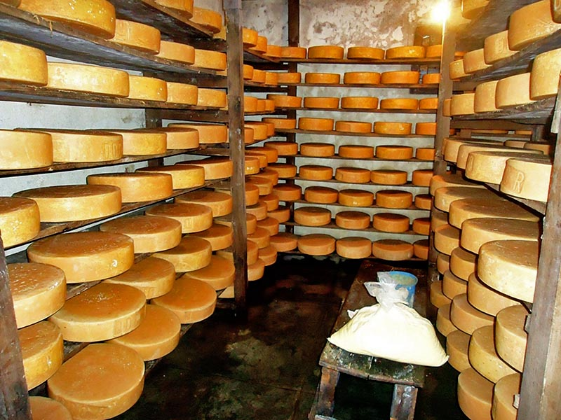 Locally produced cheese by the Dairy Development Corporation, Ilam are seen stored inside its freezer, in Rakse of Ilam district, on Saturday, December 2, 2017. Photo: RSS