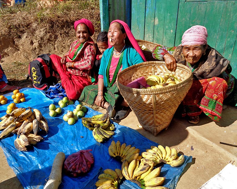 Elderly women are seen selling local agricultural product, in Aamchok Nawami Bazaar, of Phakphokthum Rural Municipality, Ilam district, on Wednesday, December 13, 2017. Photo: RSS