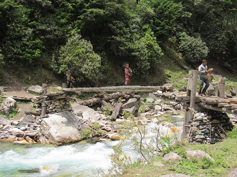 Locals crossing the makeshift wooden bridge over Chhinduri river while travelling from Baudi to Gumba in Himali Rural Municipality-3, in Bajura district. Photo: Prakash Singh