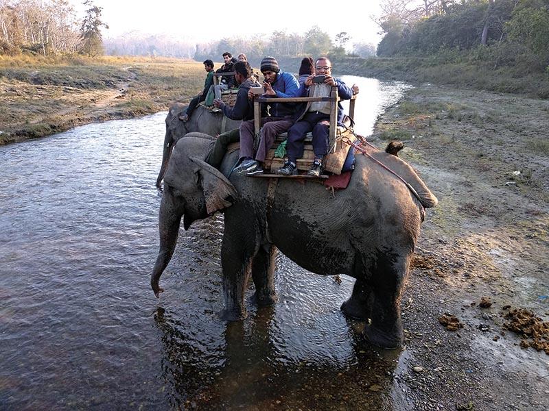 People enjoying elephant ride  in Chitwan National Park, on Saturday. Photo: THT