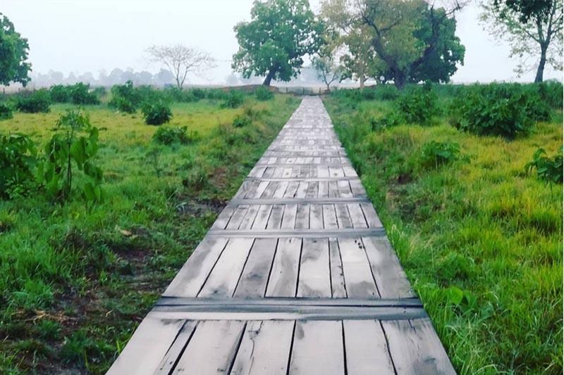 FILE - View of the wooden path that runs amid Tilaurakot Palace Area, in Kapilvastu, as on March 25, 2016. Photo: Priyanka Adhikari/THT