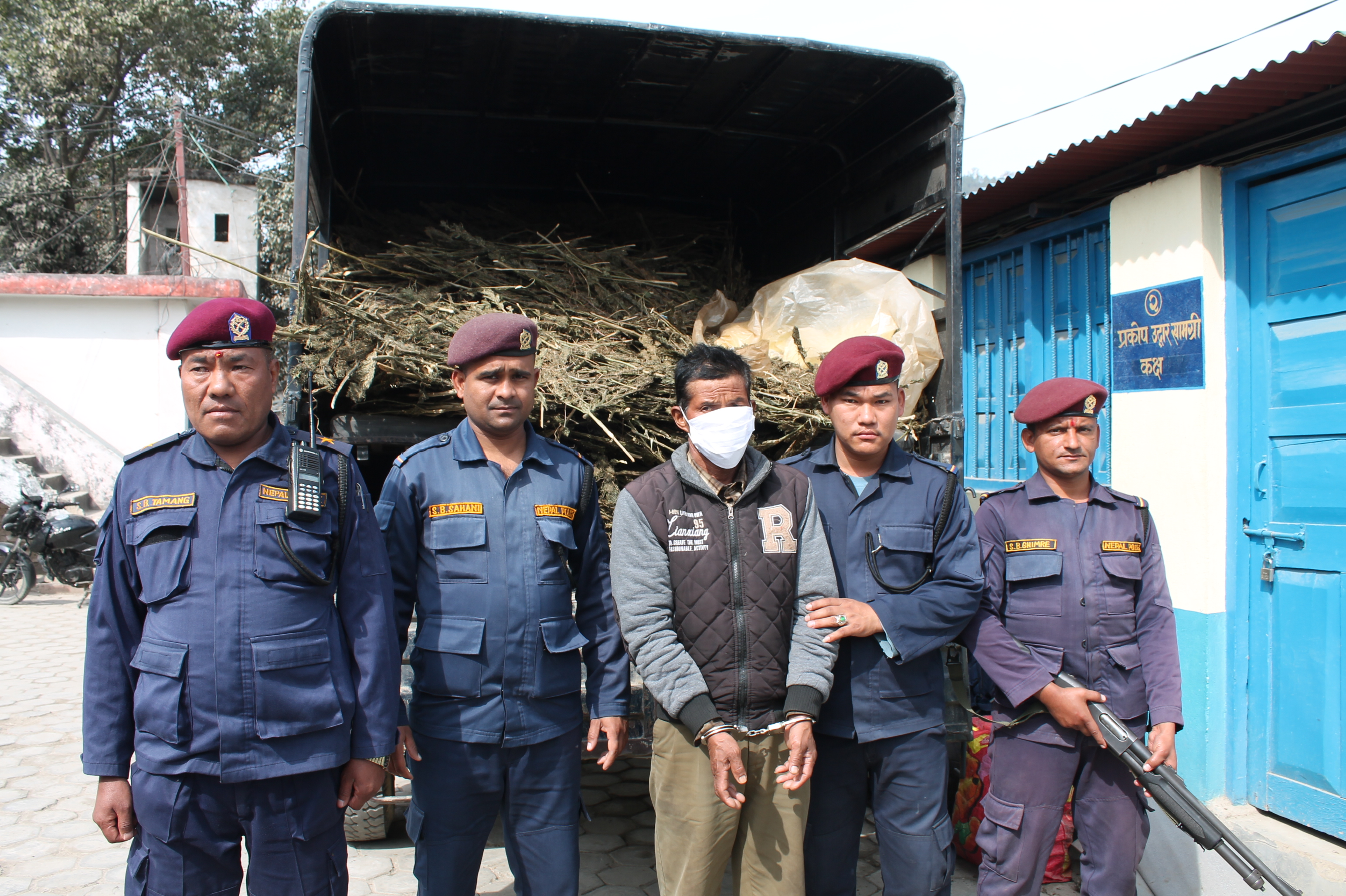 Security personnel with the arrestee who was taken into police custody with four quintals of marijuana in his possession from Raksirang Rural Municipality-8, in Makwanpur district, on February 13, 2018. Photo: Prakash Dahal