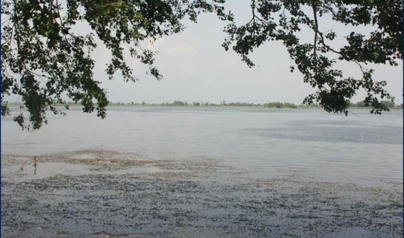 This undated image shows Jagadishpur Reservoirin in the Kapilvastu district of the lowland Tarai. Photo: IUCN