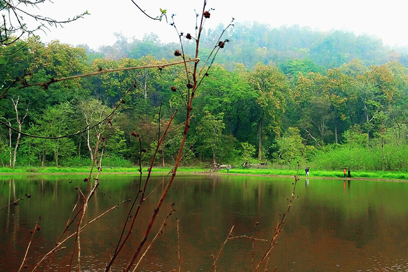 A view of natural lake in Kanchanpur district, on Monday, February 26, 2018. Photo: RSS