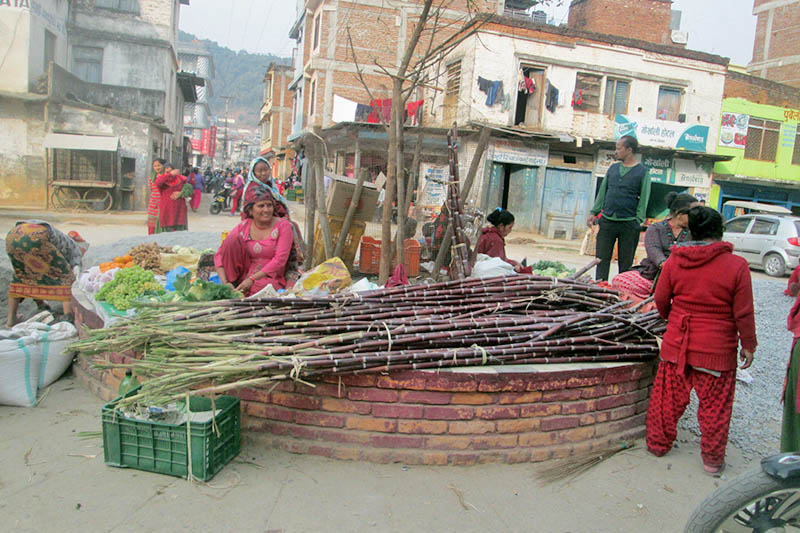 Vendors preparing to sell sugarcane specially brought for Shivaratri Festival in Damauli of Tanahun district, on Monday, February 12, 2018. Photo: Madan Wagle