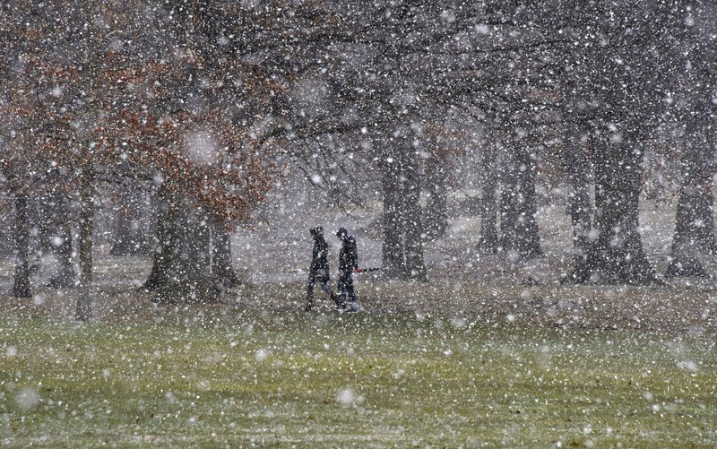 Flagstaff Hill as the snow starts to fall, in Schenley Park, on their way to the Carnegie Mellon University campus, Tuesday, March 20, 2018. Photo: AP