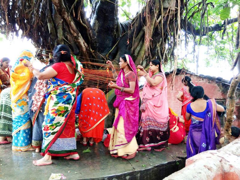 Women devotees worshipping the 'Bar' tree at Bhagawati Temple on the occasion of Bata Savitri festival, in Rajbiraj Municipality-7, on Tuesday morning, May 15, 2018. Photo: Byas Shankhar Upadhyay