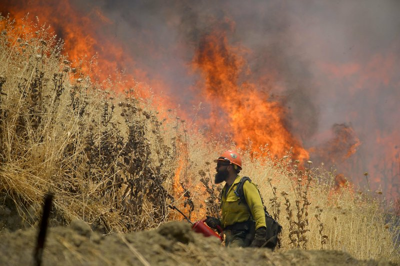 Hot Shot crews from Mendocino use backfires to help contain the County Fire along Highway 129 near Lake Berryessa in Yolo County, Calif, on Tuesday, July 3, 2018. Photo: AP