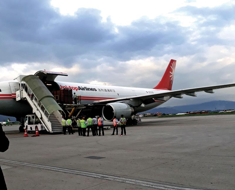 A pair of rhinos being loaded onto an aircraft to be flown to China, in Kathmandu, on Thursday, July 13, 2018. Photo: THT