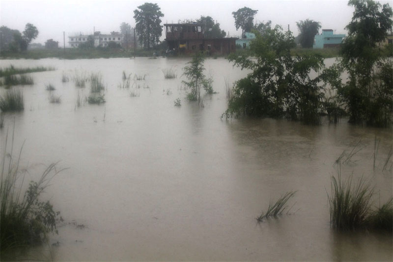Locals of Sidhharthanagar in Rupandehi district face difficulties in commuting as incessant rain continues to submerge major areas of the city. Photo: RSS