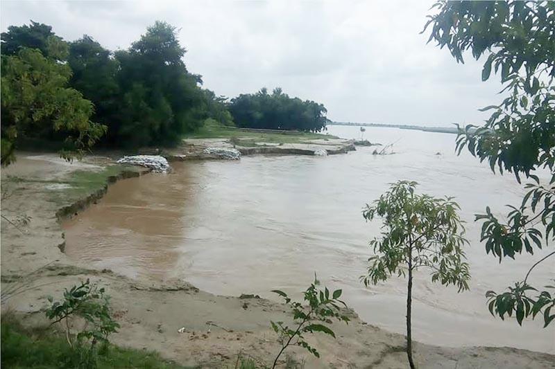 The swollen Bagmati River eroding land in Durga Bhagwati Rural Municipality, Rautahat, on Friday, August 31, 2018. Photo: THT
