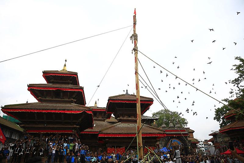 Devotees erect a ceremonial pole 'Indradhoj Linga' marking the first day of the eight-day long 'Indra Jatra' festival, celebrated to honour Indra, King of Heaven and God of rain and harvest, in Hanumandhoka, Kathmandu, on Friday, September 21, 2018. Photo: Skanda Gautam/THT