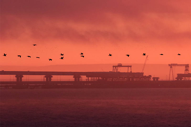Birds fly past a road-and-rail bridge, which is constructed to connect the Russian mainland with the Crimean peninsula, at sunrise in the Kerch Strait, Crimea November 26, 2018. Photo: Reuters