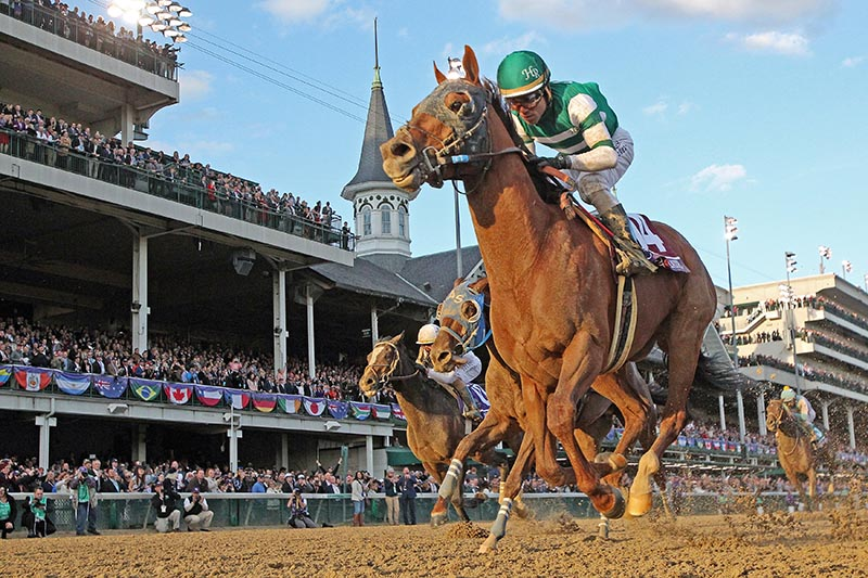 Jockey Joel Rosario aboard Accelerate wins the Breeders Cup Classic during the 35th Breeders Cup world championships at Churchill Downs in Louisville, KY, USA, on Nov 3, 2018. Photo: Brian Spurlock-USA TODAY Sports via Reuters