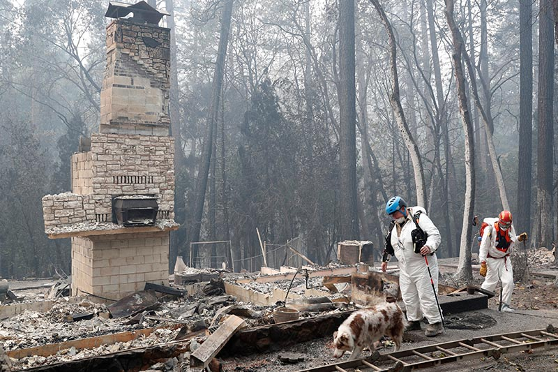 Trish Moutard (centre), of Sacramento, searches for human remains with her cadaver dog, I.C., in a house destroyed by the Camp Fire in Paradise, California, US, November 14, 2018. Photo: Reuters