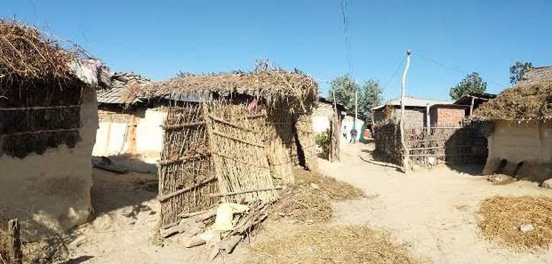 A view of a Dalit settlement which was sold after the ward officeu2019s recommendation. at Fulbariya Maharatole of Mirchaiya Municipality, in Siraha, on Sunday. Photo: THT