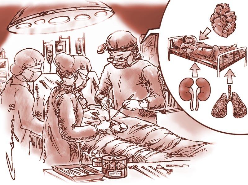 Illustration: Ratna Sagar Shrestha/THT
