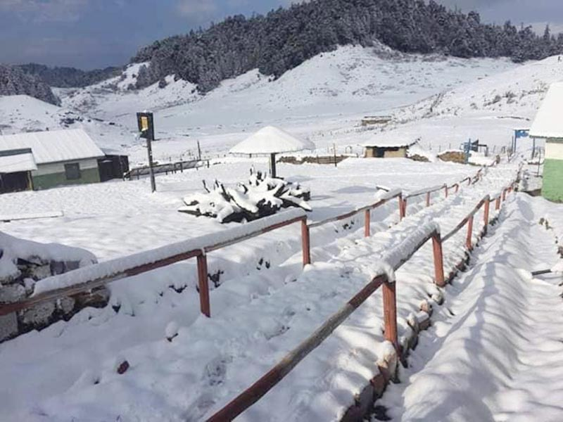A view of snow covered Khaptad National Park area, on Tuesday, January 29, 2019. Photo: THT