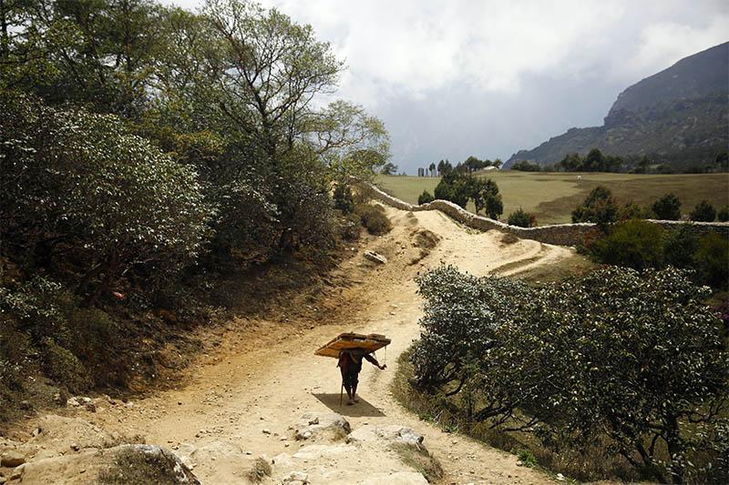 A local, carrying load on his back, passes by Khumjung Village at Solukhumbu district, on Tuesday, May 28, 2019. Photo: Skanda Gautam/THT