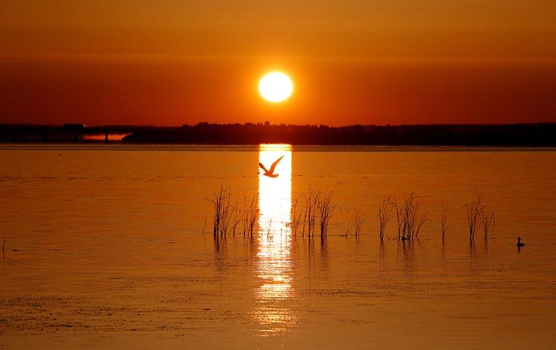 The rising sun illuminates the lake near the town of Vileika, Belarus June 16, 2019. Photo: Reuters