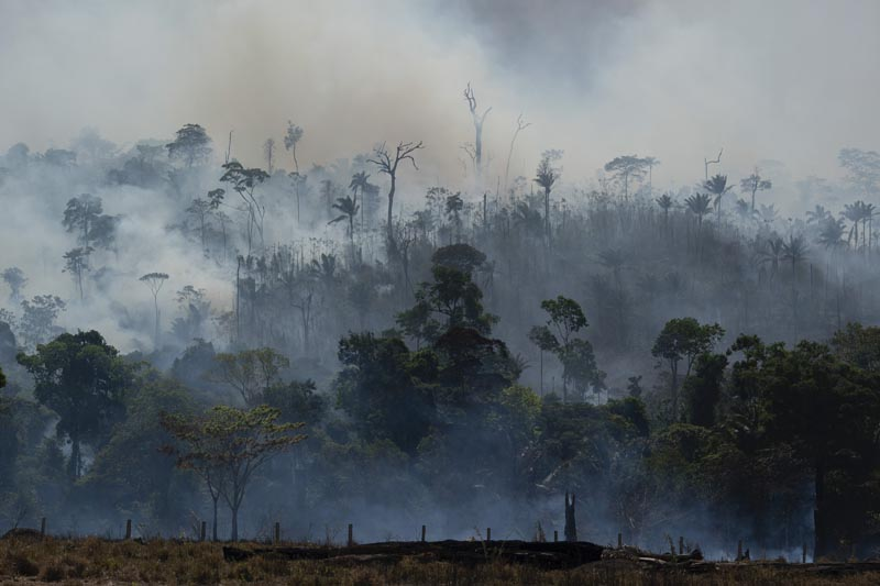 Fire consumes the Amazon rainforest in Altamira, Brazil, Tuesday, August 27, 2019. Photo: AP