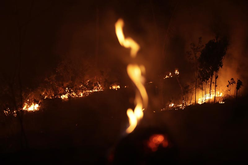 A fire burns in highway margins in the city of Porto Velho, Rondonia state, part of Brazil's Amazon, on Sunday, August 25, 2019. Photo: AP