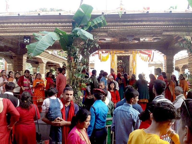 Hindu devotees and revellers throng Bindhyabasini Shaktipeeth, a temple on the occasion of Phulpati, the seventh day of Bada Dashain, on Saturday, October 5, 2019. Photo: RSS