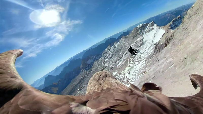 In this image made from video provided by Eagle Wings Foundation/Chopard, aerial footage shot by a camera attached to an eagle of a glacier in Western Europe. Photo: Eagle Wings Foundation/Chopard via AP