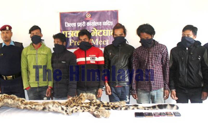 Police make public six persons in possession of animal hide at District Police Office, Dhading, on Sunday, November 24, 2019. Photo: Keshav Adhikari/THT