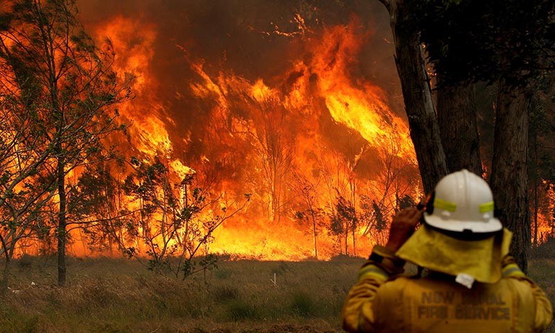 A firefighter on property protection watches the progress of bushfires in Old Bar, New South Wales, Australia November 9, 2019. Photo: AAP Image/Shane Chalker/via REUTERS