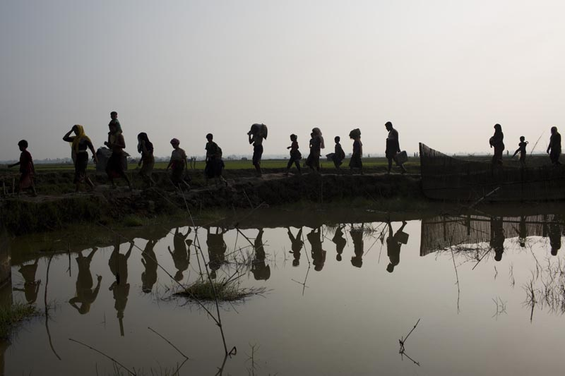 File- In this Tuesday, September 5, 2017, file photo members of Myanmar's Rohingya ethnic minority walk through rice fields after crossing the border into Bangladesh near Cox's Bazar's Teknaf area. Photo: AP