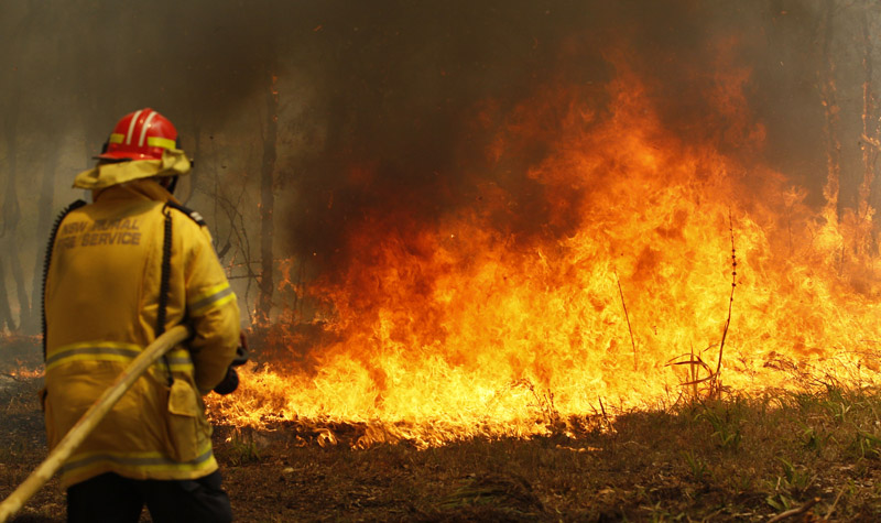 Firefighters work to contain a bushfire along Old Bar road in Old Bar, Saturday, November 9, 2019. Photo: AP