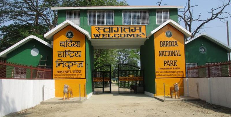 A view of Bardiya National Park, in Bardiya. Photo: Tilak Gaunle