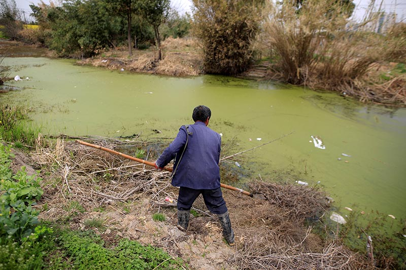 FILE - A farmer works on a polluted river in Shanghai, China, March 21, 2016. Photo: Reuters
